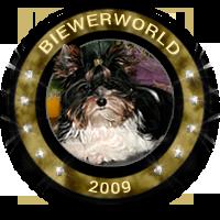Biewerworld 2009